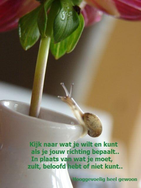 Bewegen, hooggevoeligheid. Meer op www.facebook.nl/hooggevoeligheelgewoon en www.hooggevoeligheelgewoon.nl