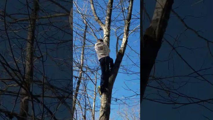 #VR #VRGames #Drone #Gaming TREE CLIMBING GONE WRONG vr videos #VrVideos https://www.datacracy.com/tree-climbing-gone-wrong/