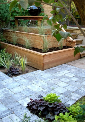 Planter Boxes Multi Level Bordered By Pavers Growing