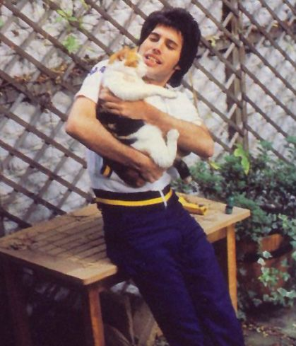 Freddie Mercury & one of the many cats he had & loved during his life.
