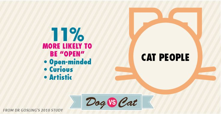Cat lovers are more open-minded