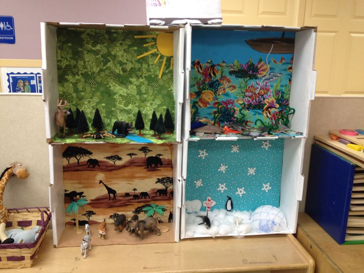 Animal habitats for wild animal unit. Used 4 boxes of same size and covered the outside of them with white contact paper then the background I used fabric designs and added to each area trees, pebbles and cotton balls to enhance each habitat. Children then sort the animals to their correct habitat.