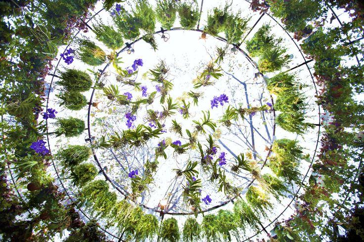 plafond-bulle-vegetale.jpg (1100×733)