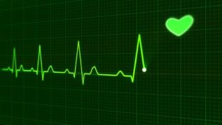 Hasta ahora, la mayoría de los tejidos cardíacos creados in vitro en 2D y 3D no habían latido en armonía, pero un equipo de investigadores de Canadá ha conseguido que lo hagan. Su avance permitirá realizar mejores pruebas sobre medicamentos y ayudará a eliminar medicamentos dañinos o tóxicos antes.