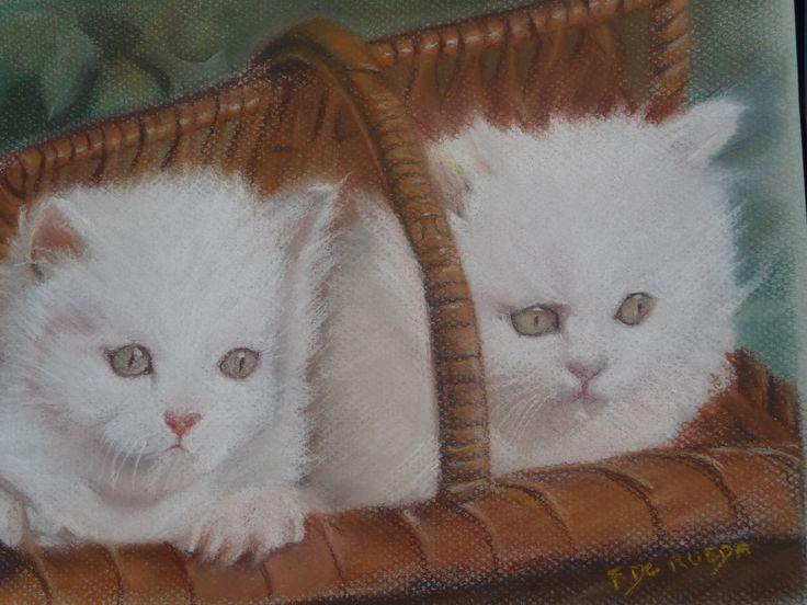 chatons réalisés au pastel