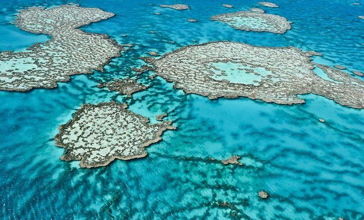 A espetacular Grande Barreira de Corais da Austrália. Patrimônio Mundial da UNESCO, a Grande Barreira de Corais da Austrália é o maior recife de corais do mundo. São mais de 2mil km de extensão, ai logo de todo o estado de Queensland, e formam um completo – e frágil – ecossistema composto por corais nas mais diferentes cores, tartarugas, uma infinidade de espécies e cores de peixes, raias, entre outras criaturas marinhas.