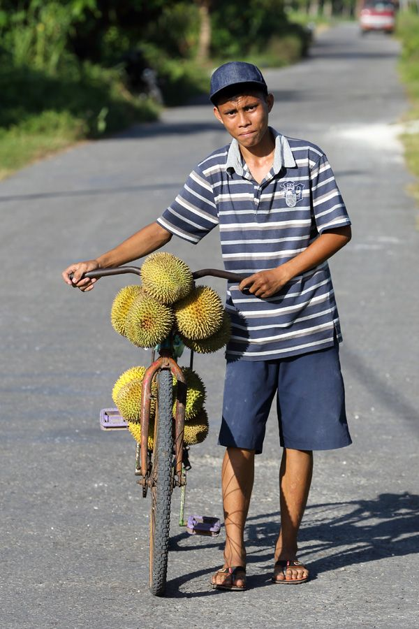 Durian season in North Nias Regency. Durian is a Asian fruit which the locals go mad for. This is an acquired taste (and smell) and most foreigners stay away from it.  Nias Island, Indonesia. Photo by Bjorn Svensson. www.northniastourism.com