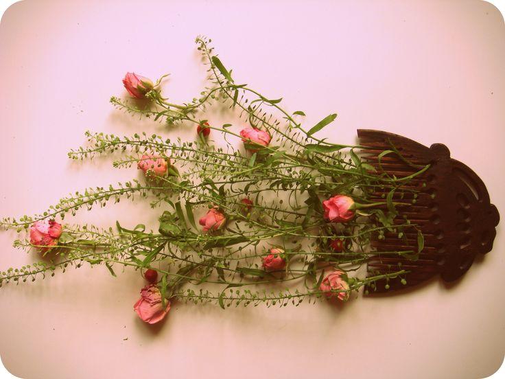 заплетает вечер в косы травы и цветы