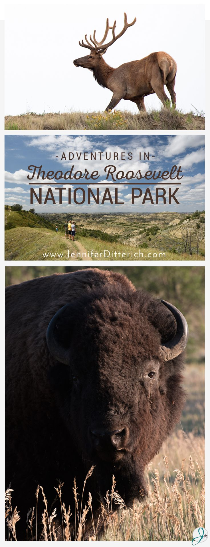 This month we are celebrating the 100th anniversary of our National Parks system. In honor of the event, I'm bringing you photos and stories from my recent trip to Theodore Roosevelt National Park. You'll be amazed at the land, wildlife and history the park has to offer...