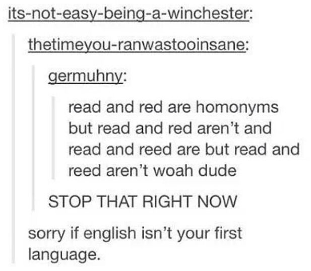 Ok English is my first language, and I don't know wtf I just read