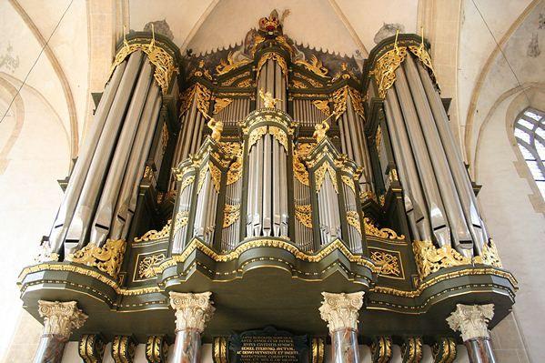 Dutch Organ Tours
