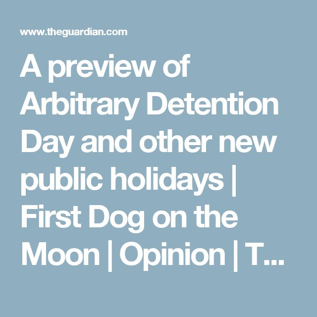 A preview of Arbitrary Detention Day and other new public holidays   First Dog on the Moon   Opinion   The Guardian