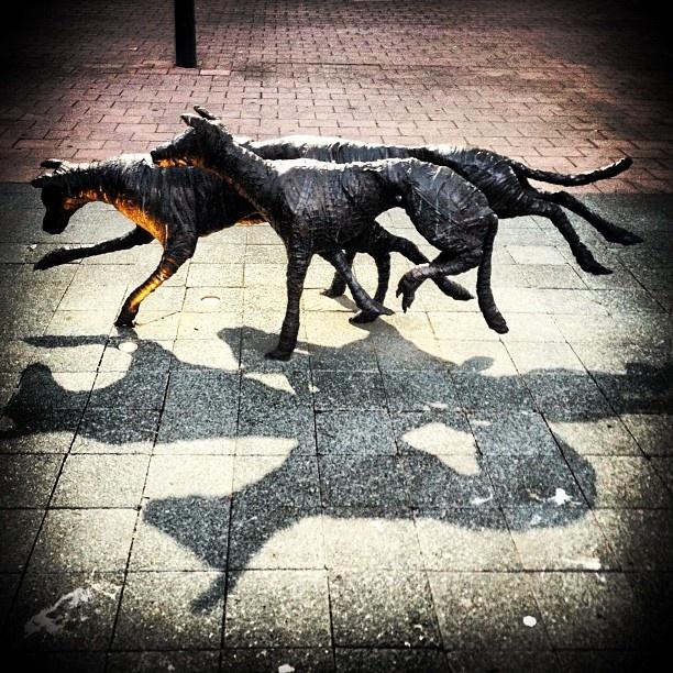 Canberra street art dogs sculpture