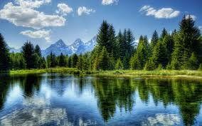 Lake, Trees, Mountains