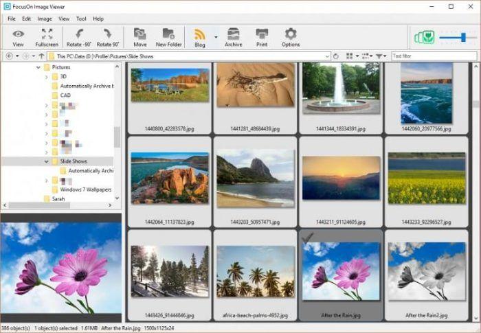 Download Focuson Image Viewer 2021 Best Photo Editor Photo Editor Best Photo Editing Software Photo Editing Software