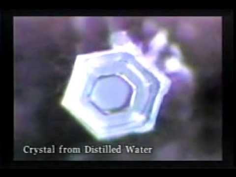 Masaru Emoto - Wieści z wody [PL]