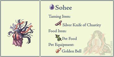 Sohee Pet