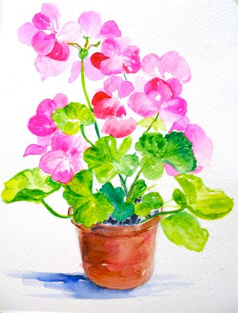 Geraniums Pink and Red Original Watercolor Painting. $25.00, via Etsy.