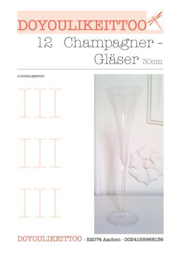 12-Champagner-Floeten-Sektkelche-Glaeser-30cm-Geschenk