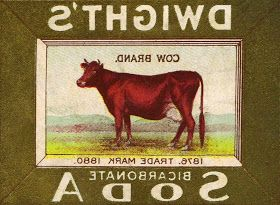 Antique Graphic Cow Image Reverse for Transfer by Knick of Time