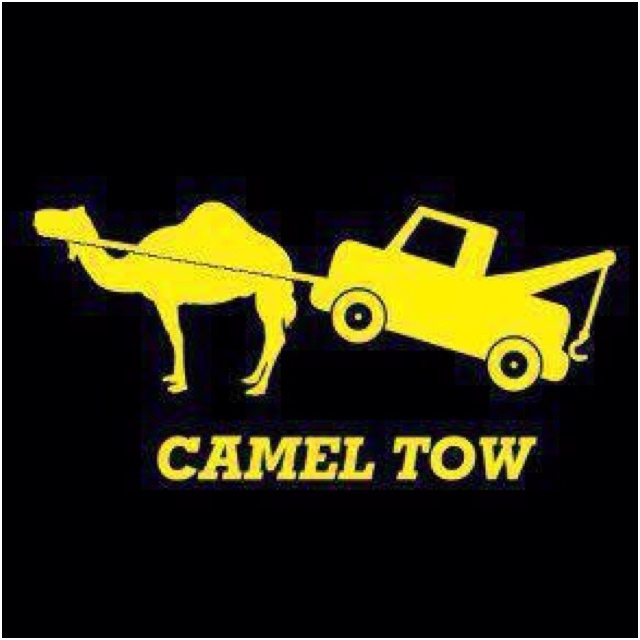 Camel tow~o the things that make me laugh