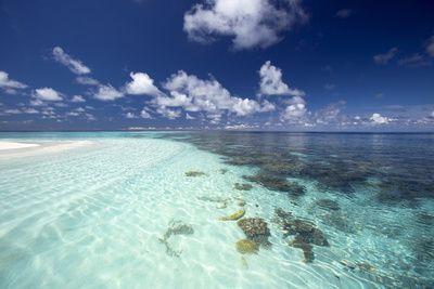 Tropical Lagoon and Coral Reef, Baa Atoll, Maldives, Indian Ocean, Asia