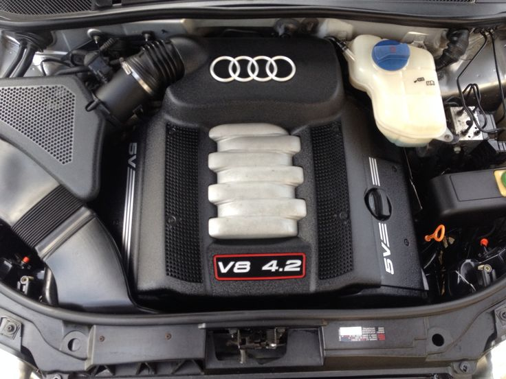 Audi's 4.2 v8 engine from S6 after detailing