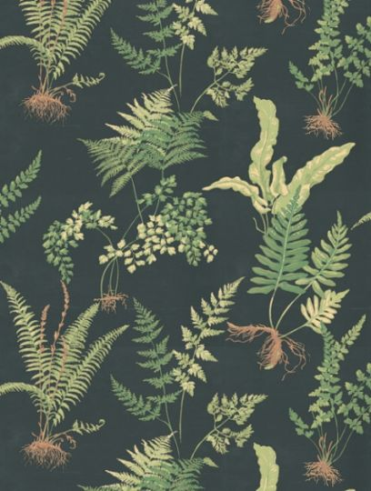 Ferns+,+a+feature+wallpaper+from+Thibaut,+featured+in+the+Classic+Thibaut+collection.