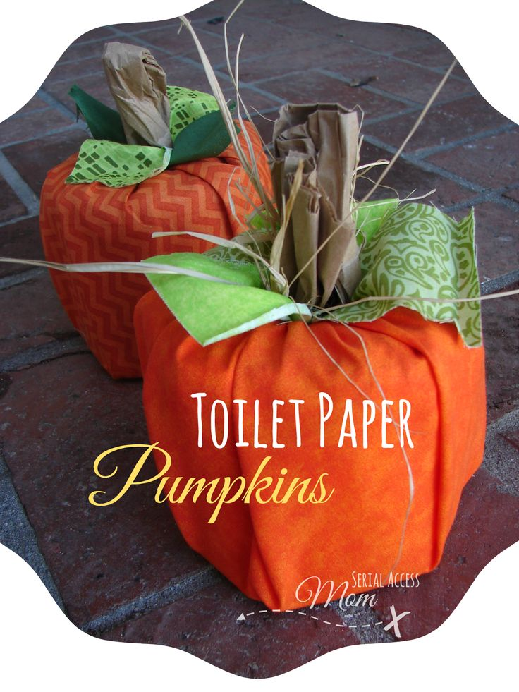 Autumn Crafts - Toilet Paper Pumpkins - Easy and Fun to Make!