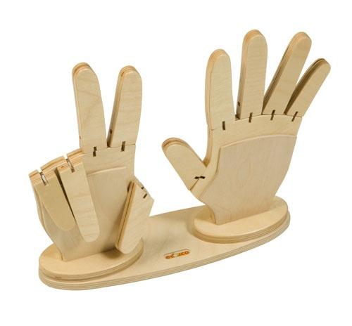 Rekenhanden Handen zijn het meest natuurlijke modelmateriaal dat er bestaat. Ze leveren een belangrijke bijdrage aan het getalbegrip. Waar de handen eerst een soort telraam zijn, worden ze geleidelijk modelbeelden, kijksteun en controlemateriaal. De rekenhanden worden geleverd als een set van twee in een houten uitvoering, ze blijven in de bordrand staan en kunnen dan letterlijk op het bord worden omschreven.  Artikelnummer: 523.001