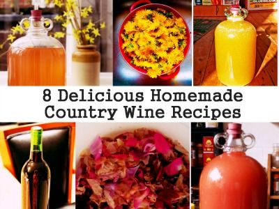 8 Delicious Homemade Country Wine Recipes (You can make these at home)