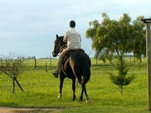 Una Tierra Diferente - Sitio Oficial de Turismo de Entre Rios - Chacra Los Quinchos