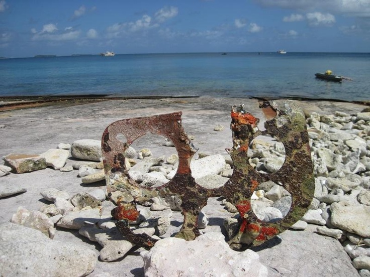 oh..this is the remains of a wrecked Japanese plane (fighter) of WW2. It was found near the atoll of Tuvalu, in the depth of 20M.
