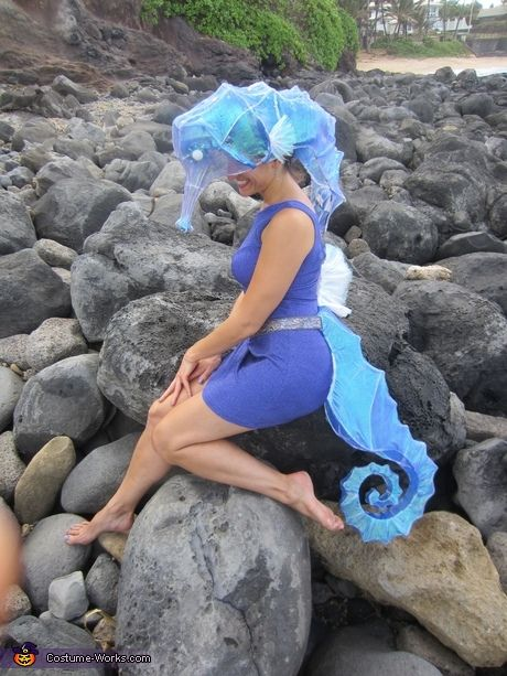 Animal costumes for women: Adult Seahorse Costume -- This sparks half-formed ideas for how this could be done much more elaborately.