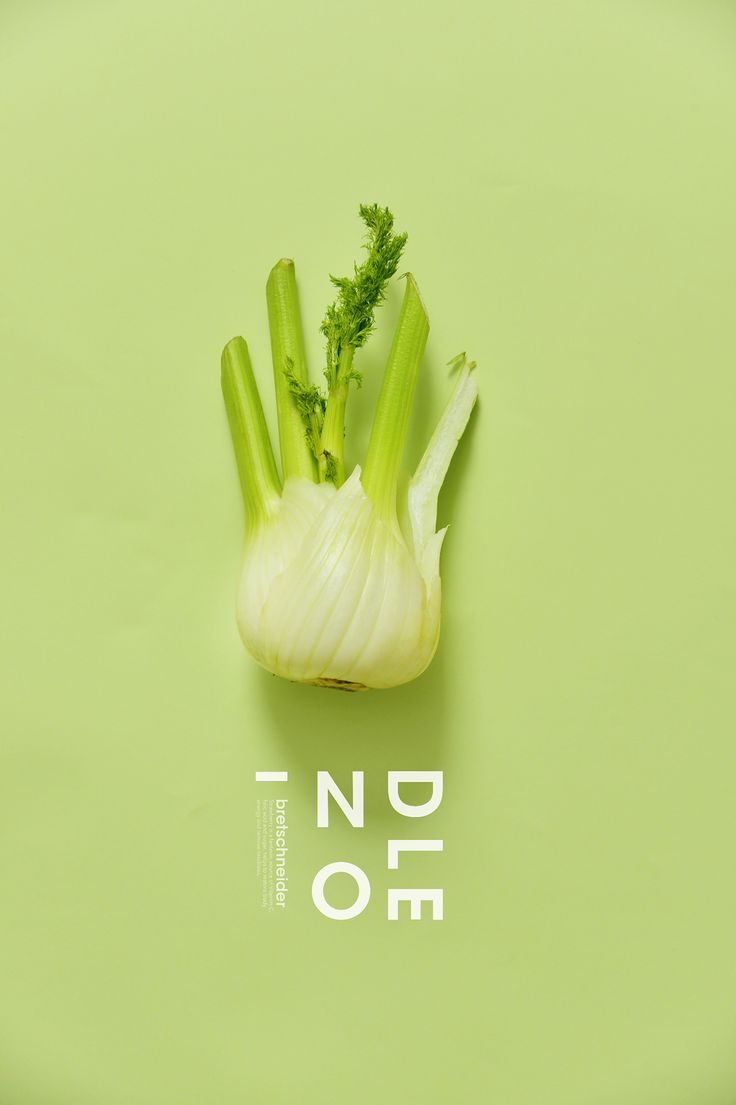colour+food+design on Behance