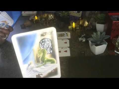 Scorpio Nourish Your Ideas Into Fruitation Woot Aug 1 15 Tarot Reading Woot Tarot