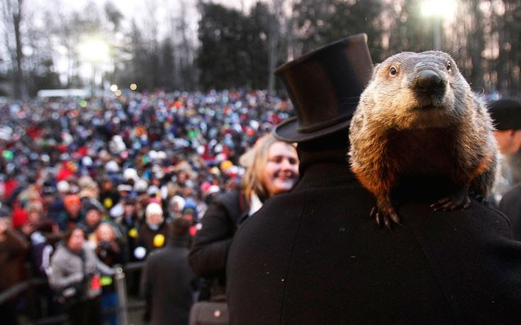 Groundhog co-handler Ron Ploucha holds Punxsutawney Phil in front of a record crowd estimated at 35,000 after Phil's annual weather prediction on Gobbler's Knob in Punxsutawney, Pennsylvania, on the 127th Groundhog Day. Phil did not see his shadow, signalling an early end to winter.