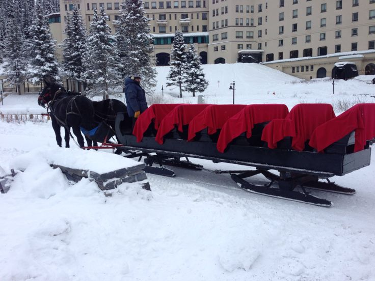 Two-Horse open sleigh ride at Lake Louise during our Canmore vacation! Lightly snowing, really beautiful!