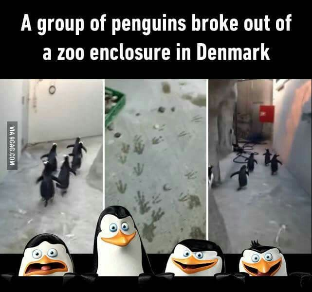 Just smile and wave, boys