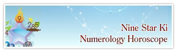 Find out how your Chinese Astrology birth chart can affect your personality and your future! Our Nine Star Ki reading examines the conditions and cosmic energies surrounding birth year, month, day and hour using Chinese Astrology, Feng Shui and Numerology #chinesenumerology