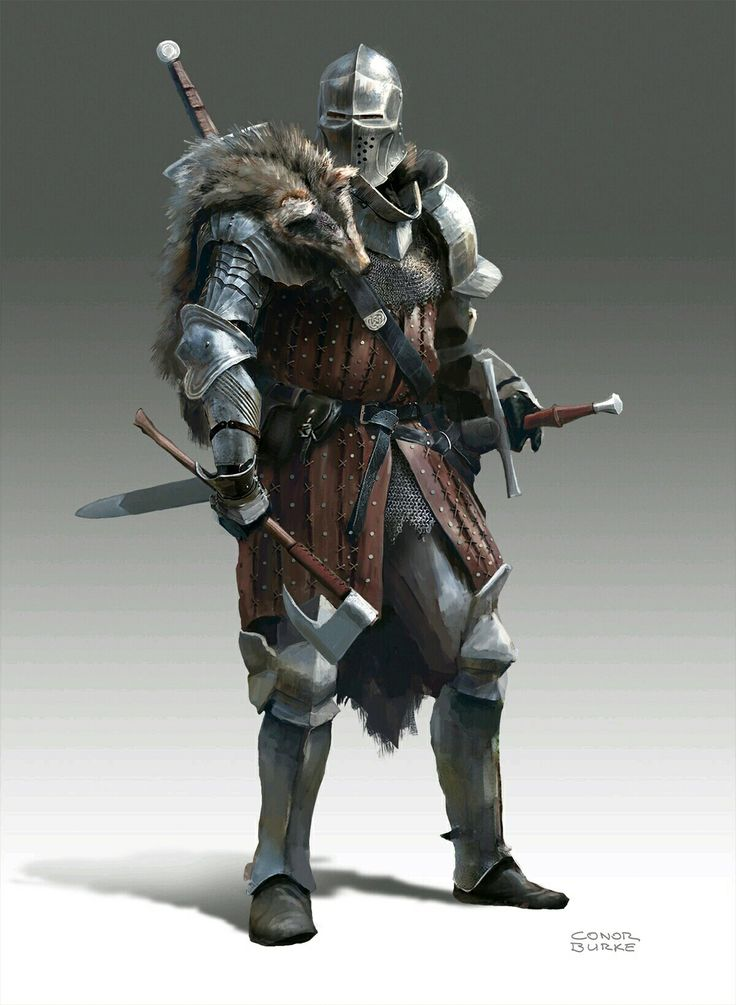 m Fighter Plate Helm Cloak Swords Axe midlvl