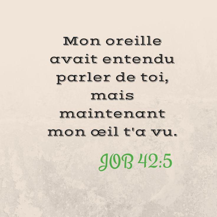 La Bible - Versets illustrées - Job 42:5 - Mon oreille avait entendu parler de toi, mais maintenant mon oeil t'a vu.