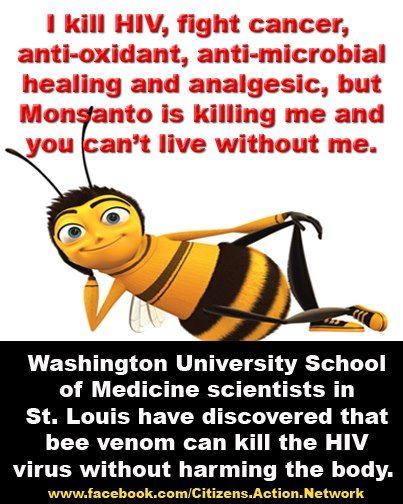 Bee venom Kills HIV video: Nanoparticles loaded with bee venom kill HIV Joshua L. Hood, MD, PhD