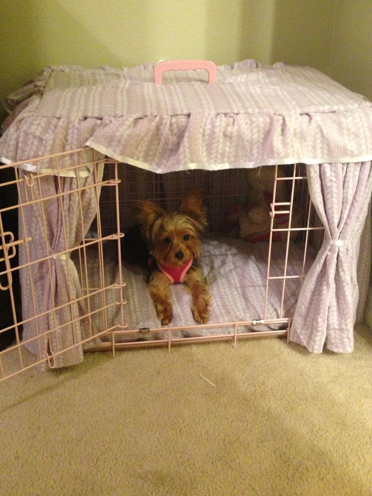 DIY...made my own dog crate cover from old sheets ,left over ribbon and 1 box. No sewing required, used a glue gun. Total cost $0.00.