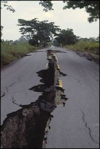 How an earthquake and tsunami changed my life.