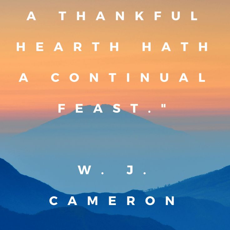 8 / 28 days Gratitude Challenge: The Magic Ingredient Oh, Blessed Food and who delivers it...