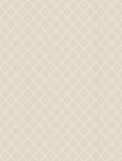 Trellis Silver  is taken from Zoffany's Papered Walls wallpaper collection.