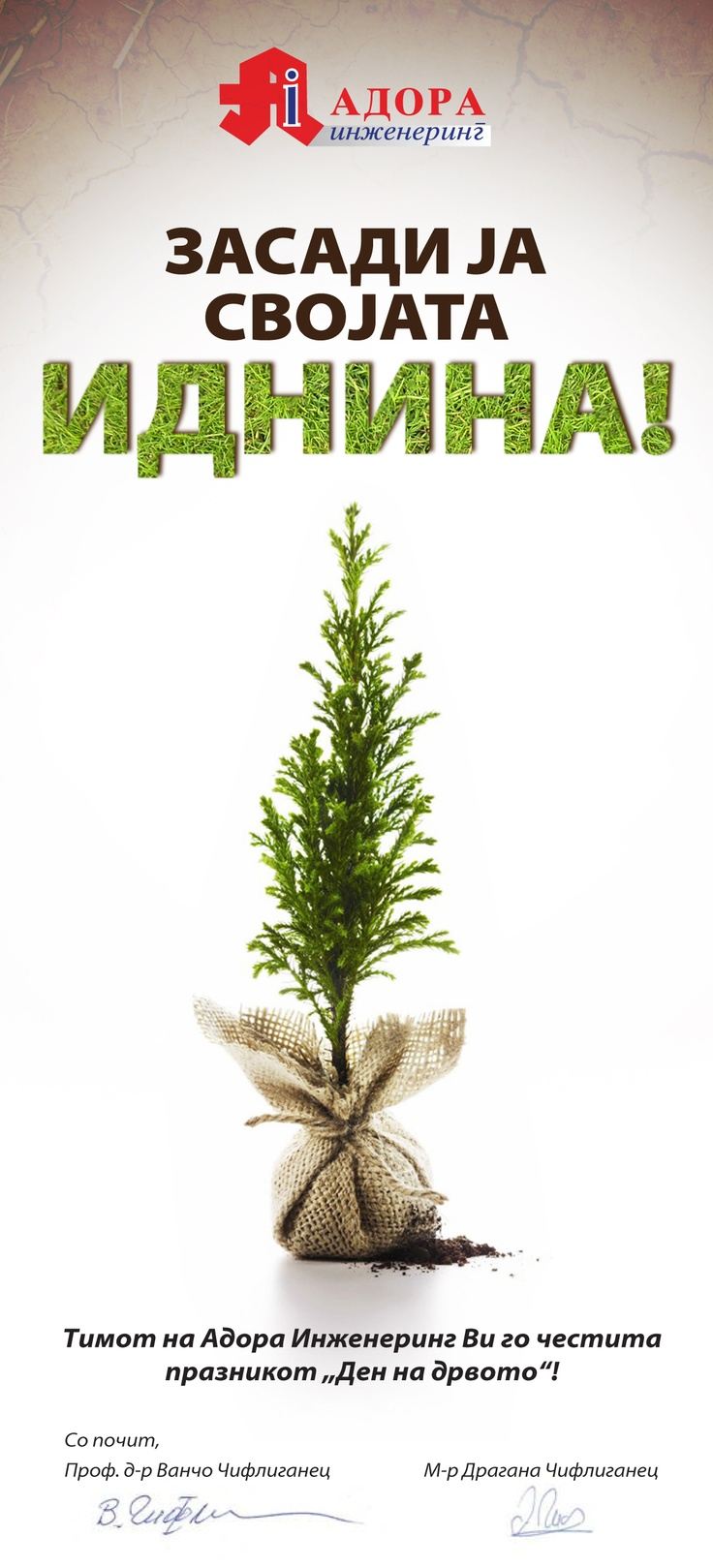 Poster for the Tree Day