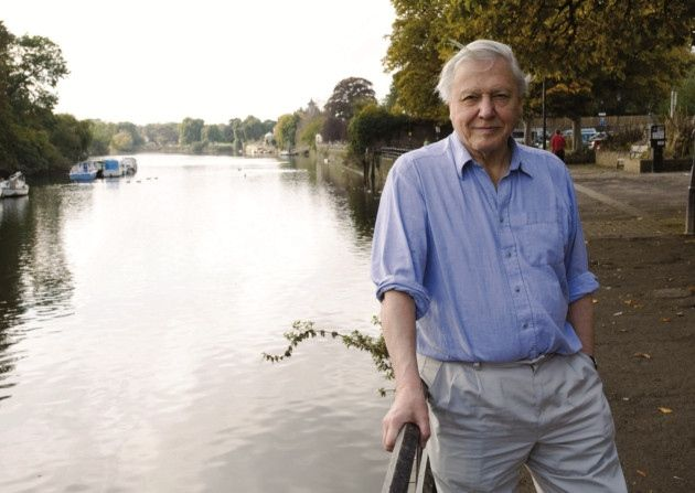 Sir David Attenborough wildlfe lecture