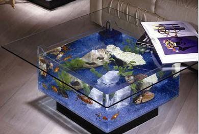 Sin duda tener peces en una casa es símbolo de armonía y felicidad, así que también debes de tener en cuenta una buena pecera e